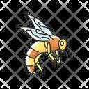 Bee Wasp Honeybee Icon