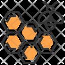 Honeycomb Hole Honey Bee Icon