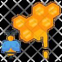 Honeycomb Honey Bee Icon