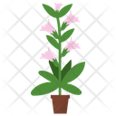 Honeysuckle Potted Plant Icon