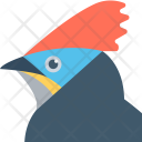 Hoopoe Icon