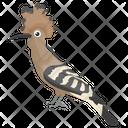 Hoopoe Bird Icon