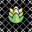 Hop Beer Seeds Beer Icon