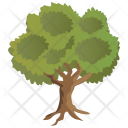 Hornbeam Botany Generic Icon