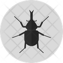 Horn Beetle Insect Bug Icon