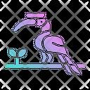 Hornbill Bird Icon
