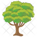 Horse Chestnut Tree Icon