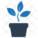 House Plant Natural Icon