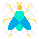 House fly Icon