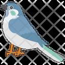 House Sparrow Icon