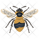 Housefly Insect Pest Icon
