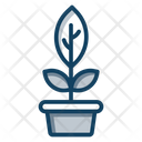 Houseplant Icon