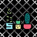 Houseplant Cactus Plants Cactus Icon
