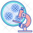 Hpv Testing Research Lab Icon