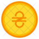 Hryvnia Coin Currency Icon