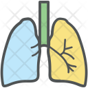 Human Lungs Breathing Icon