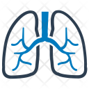 Human Lung Lungs Icon