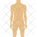 Human Body Naked Nude Icon