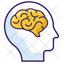 Human Brain Brain Anatomy Brain Icon