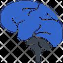 Brain Thinking Creative Icon