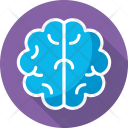 Human Head Brain Icon