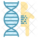 Human Dna Gene Icon