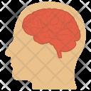Human Head Natural Icon