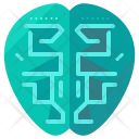 Intelligence Human Brain Icon