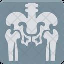 Ribs Radiology Radioscopy Icon