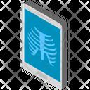 Radiology Radioscopy Ribs Icon