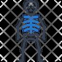 Human Skeleton Bone Icon