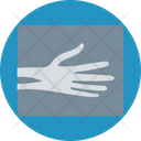 Human Spine Bones Backbones Hand Bones Icon