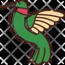 Hummingbird Bird Zoology Icon
