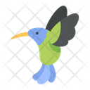 Hummingbird Bird Animal Icon