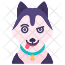 Husky Animal Avatar Icon