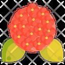 Hydrangea Flower Spring Flower Icon