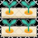 Hydroponics Production Icon