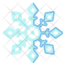 Ice Crystal Snowflake Winter Icon