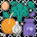 Immunity food Icon