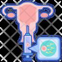 In Vitro Fertilization Cell Fertilization Icon