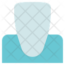 Dentist Incisor Tooth Icon