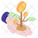 Money Growth Money Plant Income Icon