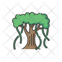 Fig Banyan Nature Icon