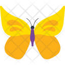 Indian Leaf Butterfly Icon