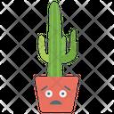 Indoor Cactus Cacti Succulent Plant Icon