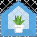 Indoor Tree Plant Icon