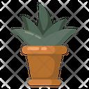 Indoor Plant Icon