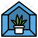 Indoor tree Icon