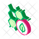 Bottle Cosmetic Healthy Icon