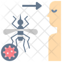 Insect Vector Transmission Icon